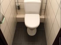 Классческий дизайн туалета в квартире