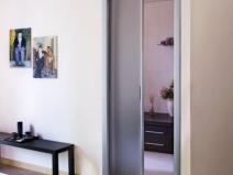 Стеклянная одностворчатая дверь пенал