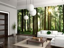 Фотообои на стене гостиной в современном стиле