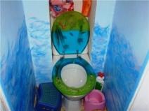 Необычная яркая отделка туалета