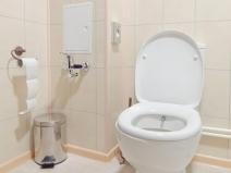 Сдержанные тона, минимализм в отделке туалета