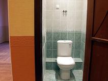 Экслюзивный дизайн туалета