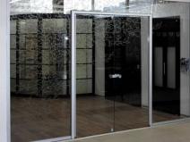 стеклянные входные двери распашные