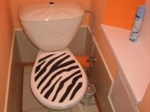 Стильный вариант дизайна туалета после ремонта